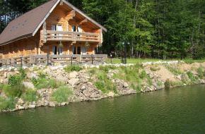 Защита деревянных домов